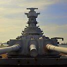 Battleship Diplomacy.... by Bob Moore