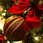 Christmas Ornaments by laurie13