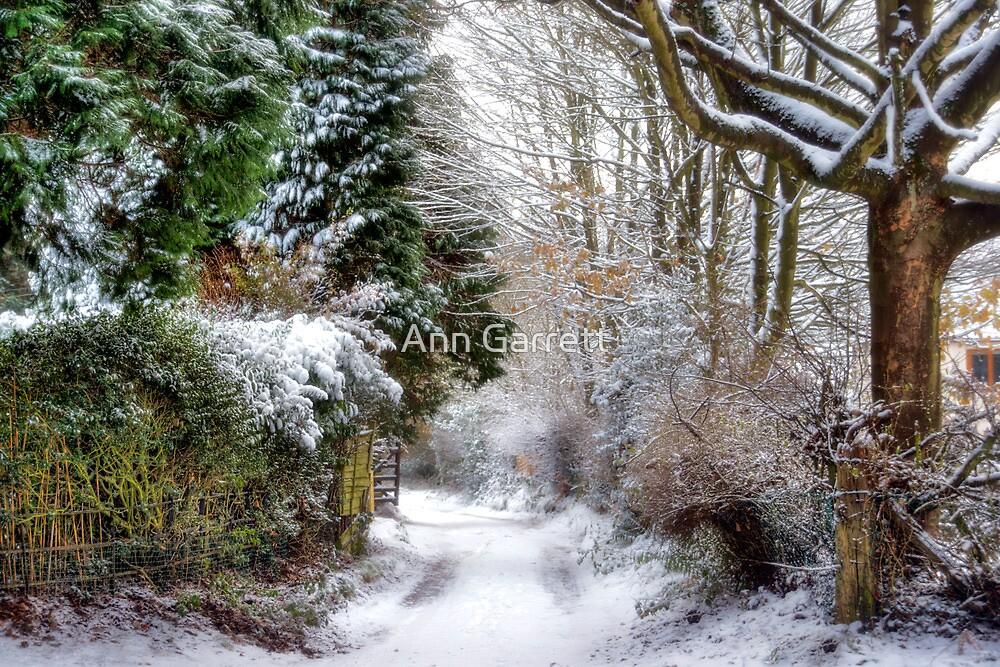 Christmas on the Chase by Ann Garrett