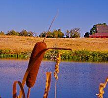 Cheadle Barn again... by Marvin Mast