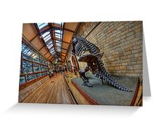 London - Natural History Museum II Greeting Card