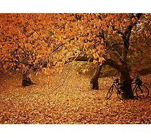 For Two - Autumn - Central Park - New York City Photographic Print