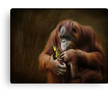 Contemplating Nature Canvas Print
