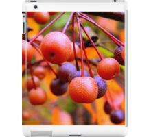 Berries    ^ iPad Case/Skin