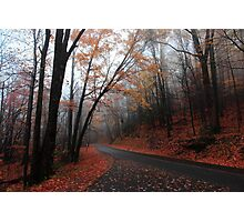 foggy fall drive Photographic Print