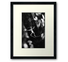 Ghostly Apparition II Framed Print