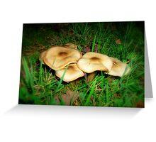Pancake Mushrooms Greeting Card