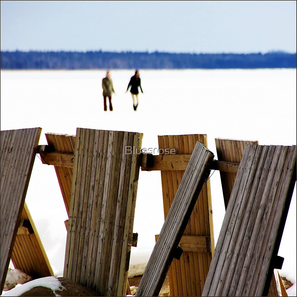 Winter beach by Bluesrose