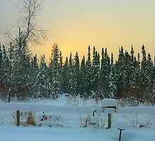 Frosty Winter Sunrise by MaeBelle