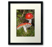 red cap Framed Print