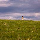 Little House on The Prairie 2011 by thruHislens .