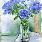 Plumbago from our garden by Karin Zeller