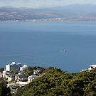 Wellington Harbour by Mike Warman