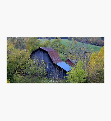 Back Of The Barn Photographic Print
