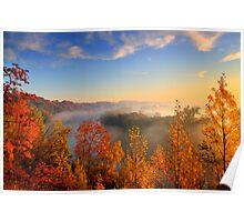 Morning Fall Colours Poster