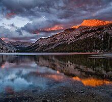Tenaya Lake Sunset 2 by Cat Connor