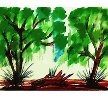 Trees, watercolor Photographic Print