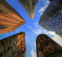 Looking Up by DChungaPhoto