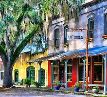 Downtown Micanopy,FL by Karen Peron