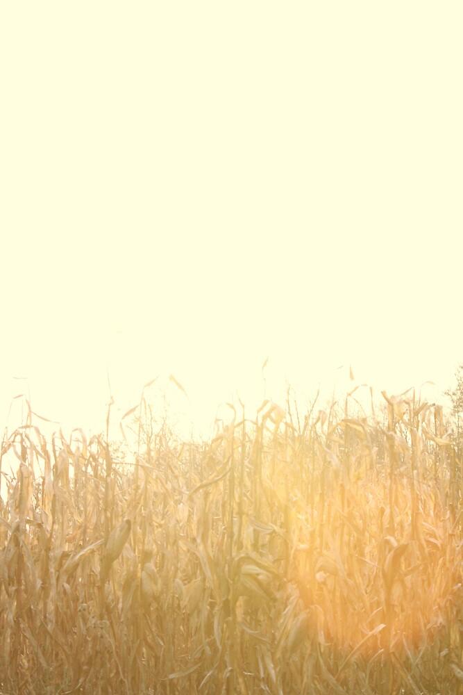 novembers harvest by sarahb03