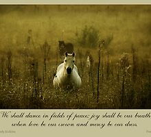 ~ Fields of Peace ~ by Donna Keevers Driver