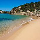 Beach Landscape,Victoria,Australia. by Marianne Ellis