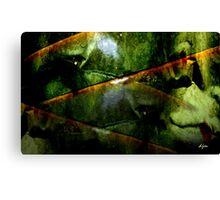 Punched And Kicked Canvas Print