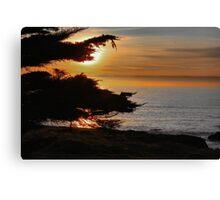 Sea Ranch Sunset Canvas Print