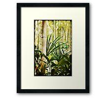 Majestic Bamboo Framed Print
