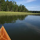 Early Morning on Lake Itasca by Dawne Olson