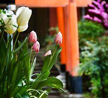 Fushimi Inari Tulips by Lynnette Peizer