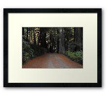 Road in the giants Framed Print