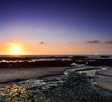 Moss Beach River to the Sea by Matt Hanson