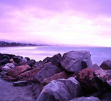 Half Moon Bay - Rose Rocks by Matt Hanson
