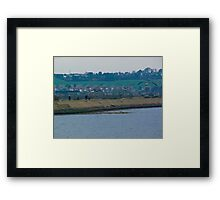 Brent geese approaching Framed Print