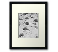 Dog tracks in the snow Framed Print