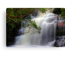 Absolute Grace Canvas Print