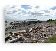 Driftwood Coast Canvas Print