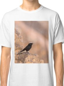white-crowned wheatear, or white-crowned black wheatear  Classic T-Shirt