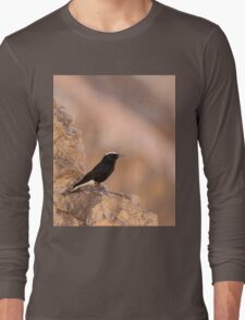 white-crowned wheatear, or white-crowned black wheatear  Long Sleeve T-Shirt