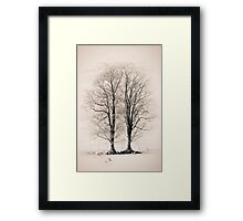 The Wyches of Hareden 03, Trough of Bowland, Lancashire Framed Print