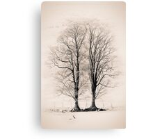 The Wyches of Hareden 03, Trough of Bowland, Lancashire Canvas Print