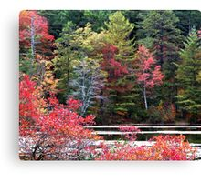 Lakeside Color Canvas Print