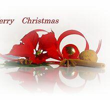 Merry Christmas by Aviana