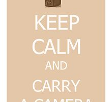 Carry a Camera by Suzanne Edge