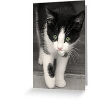 Silver Paper Ball Game Greeting Card
