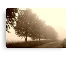 Paths in the Shadow Canvas Print