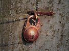 Old Lock by Eileen McVey