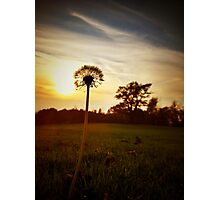 Sometimes the Sun Spangles Photographic Print