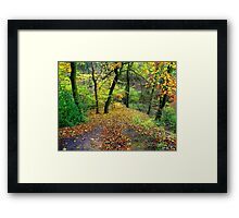 Coloured Countryside Framed Print